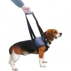 harnais-pattes-avant-pour-chien.jpg