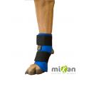 Carpoflex sport : attelle de maintien pour chien