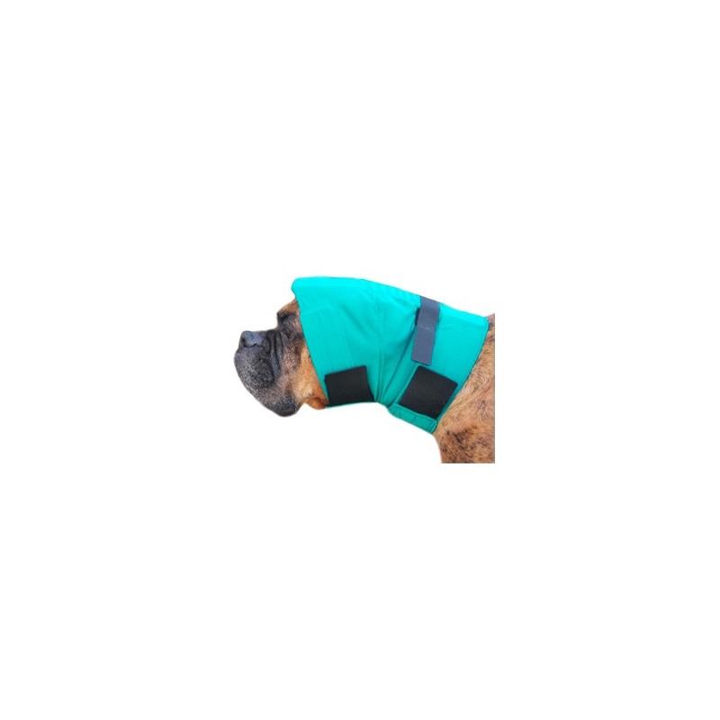 Snood pour protection des oreilles chien Mikan