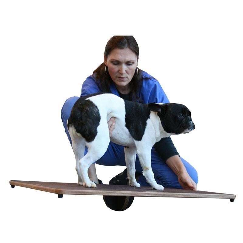 Planche d'équilibre pour animaux