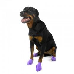 chaussure-pour-chien-pawz.jpg