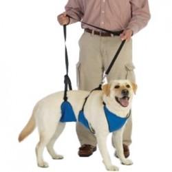 Harnais total avant-arrière pour chien handicapé
