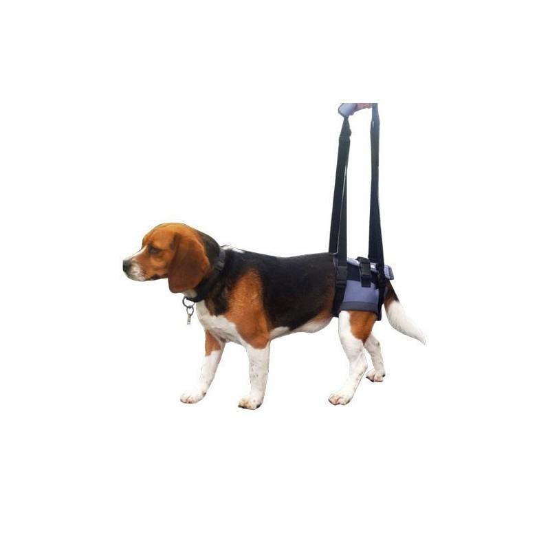 Harnais pattes arrière pour chien handicapé MIKAN VET
